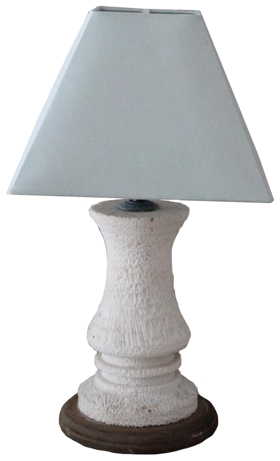 Antique Piece of Coral adapted as Table Lamp