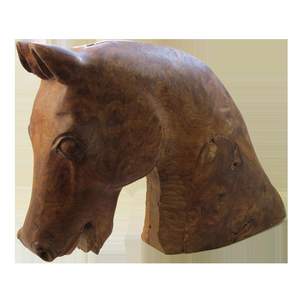 Charming Burr Elm Horse Head