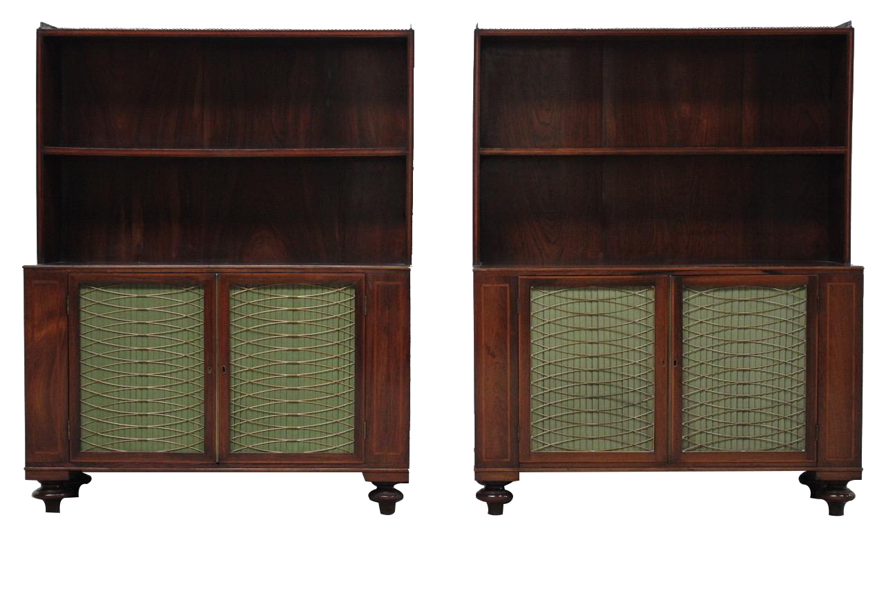 Fine Pair of 19th Cent English Regency Bookcases