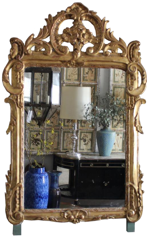 19th Century French Carved Gilt wood Mirror