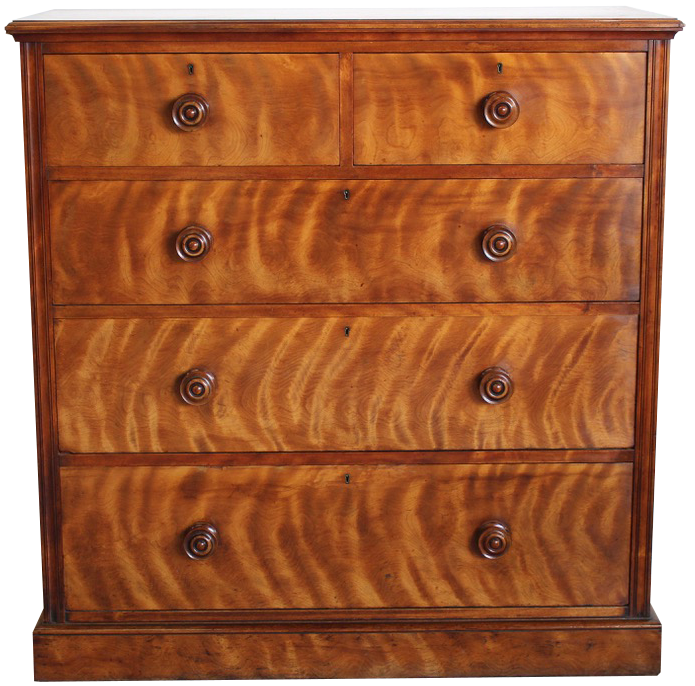 Mid 19th Cent English Satin birch Chest of Drawers